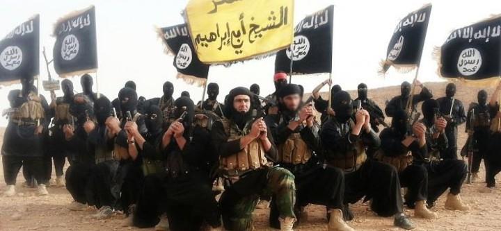 Armée du djihad etat islamique 2014