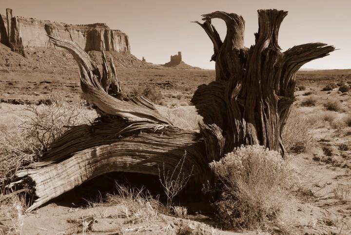 Monument valley terre indiens Navajos paysage sept 2008 - Copie (Copier)