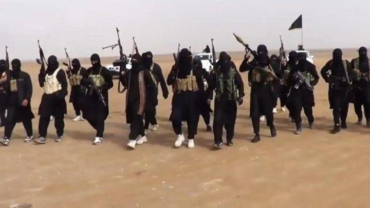 Etat islamique Daech 2015