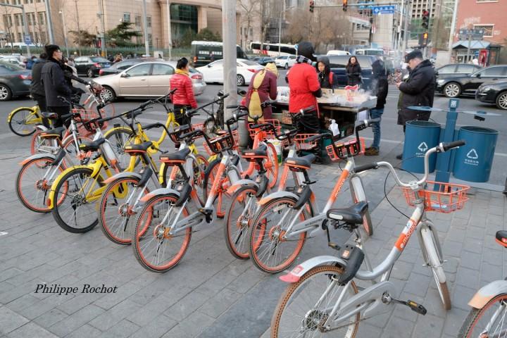 Pékin vélos h signé (Copier)