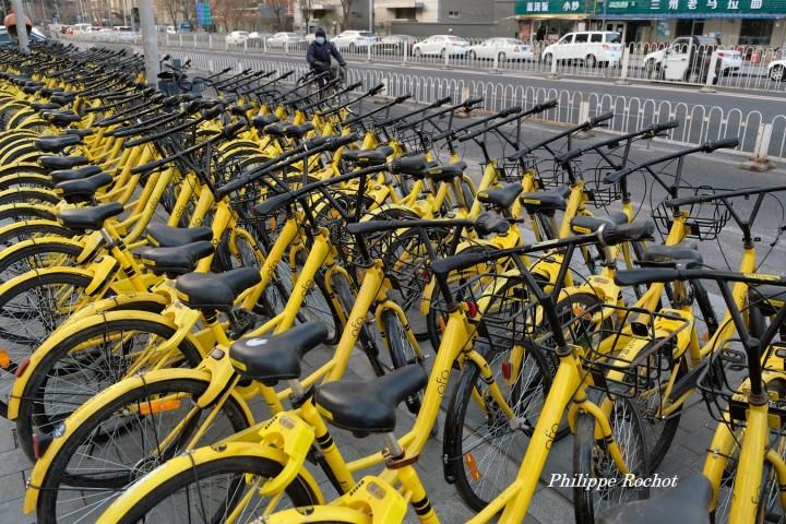 Vélo Pékin d signé (Copier)