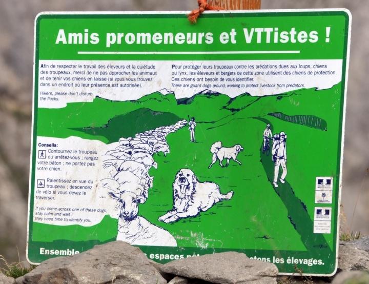 Cerces bouquetins aout 2015 (23) pancartes (Copier)